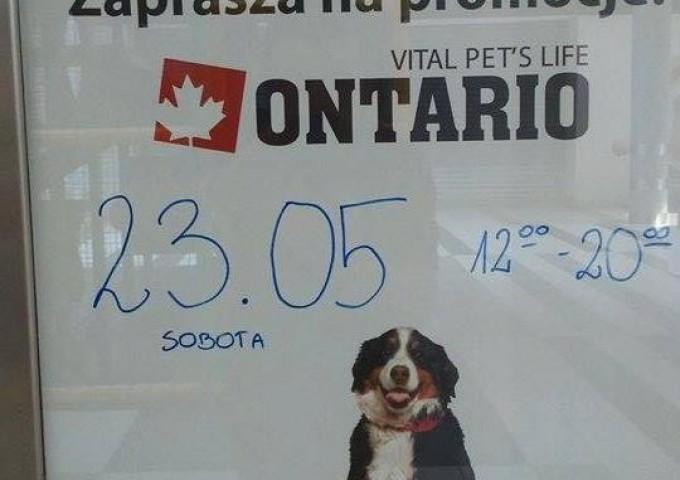 Ontario - kanadyjska jakość dla Twojego Przyjaciela.