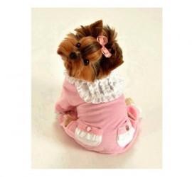 Ubranka dla psów - kiedy mój pies je potrzebuje?