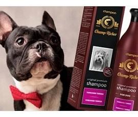 CHAMPION CHAMP-RICHER - szampony pielęgnacyjne dla psów i kotów