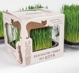 KOT W BUTACH - ekologiczna trawka dla kota