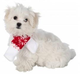 Szalik ze świątecznym motywem dla psów i kotów TRIXIE