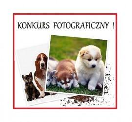 Światowy Dzień Zwierząt w ZooAligator Grudziądz - konkurs fotograficzny!