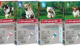 BAYER Advantix dla psów - pipeta do 4 kg