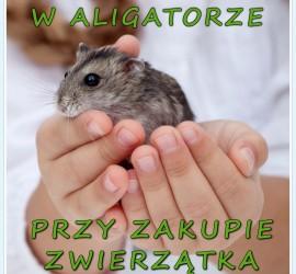 Dzień Dziecka w Zoo Aligator Olsztyn